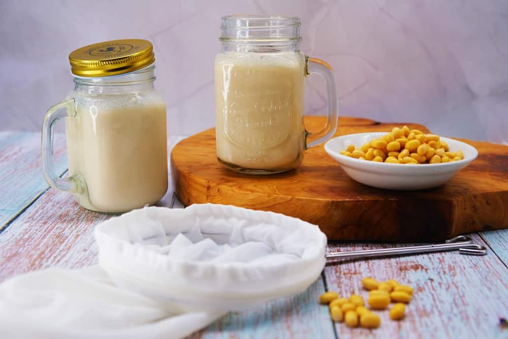 Vegan Recipes Cacao-Shamaness Vegan Homemade Fresh Soy Milk Recipe